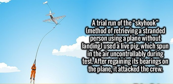fascinating_facts_11