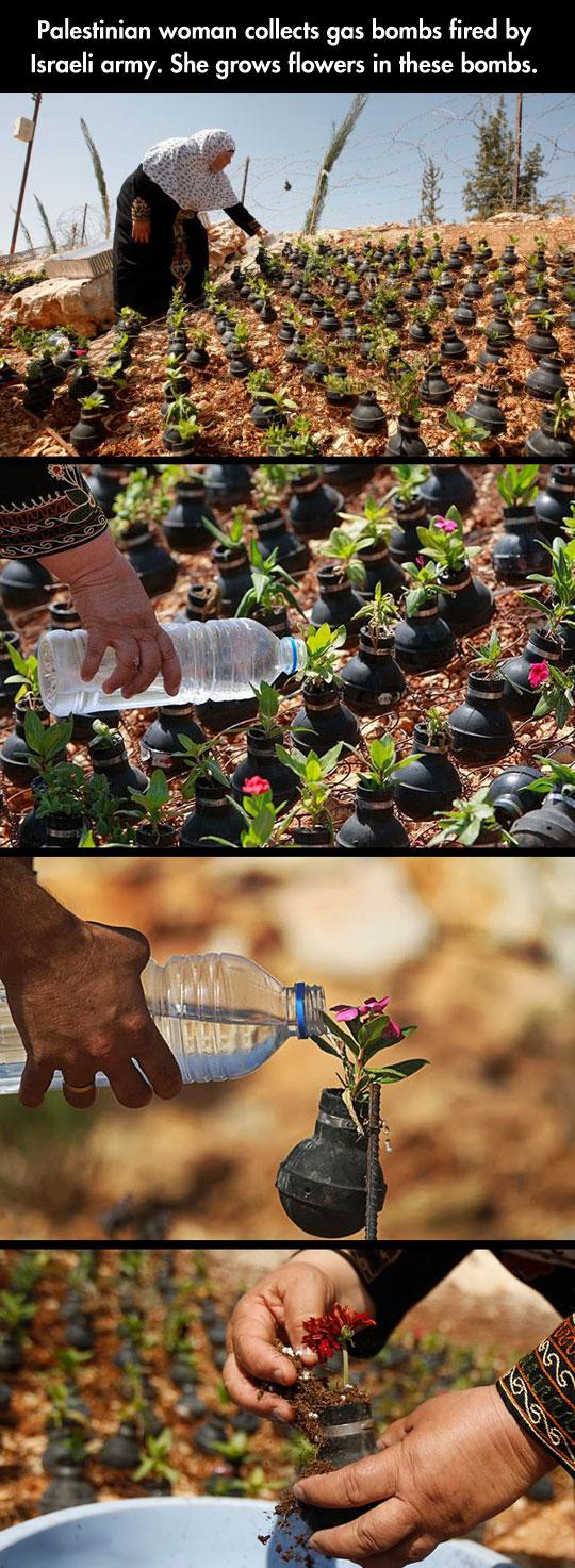 flowers-grenades-shells-old-woman