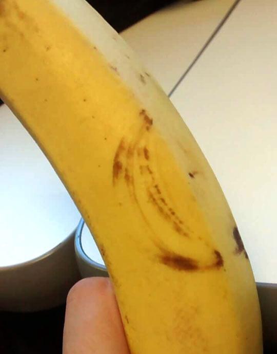 funny-banana-art-inception