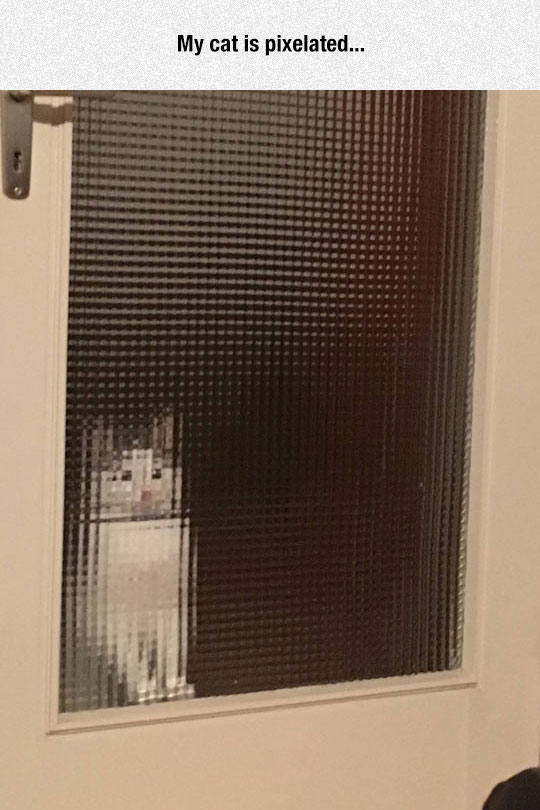 Pixelated Kitty