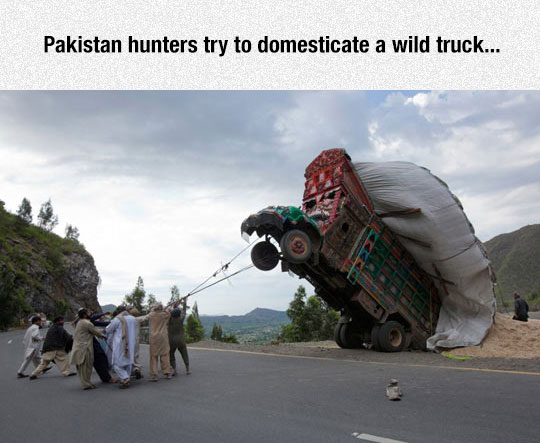 funny-truck-road-people