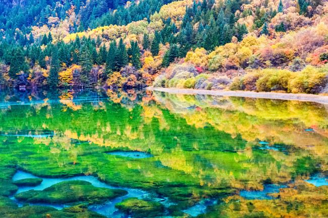 beauty autumn in jiuzhaigou valley national park ,fairy tale picture