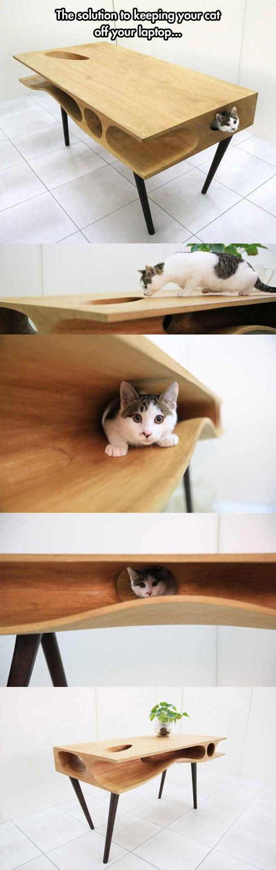 table-cat-holes-design-wood