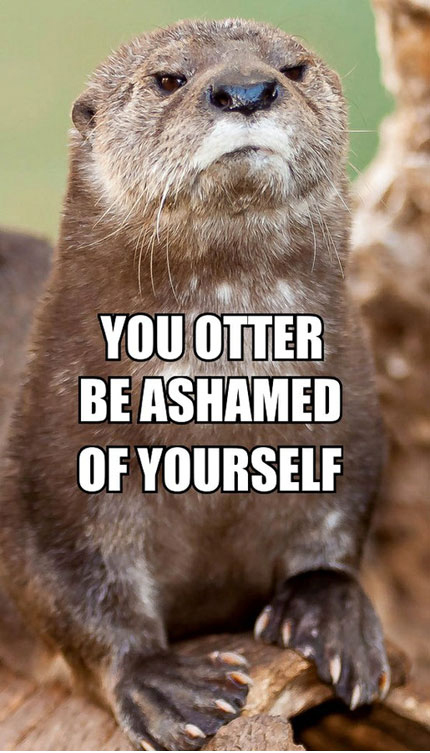 Disappointed Otter