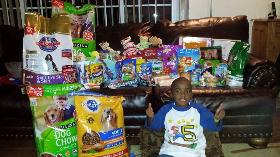 Lil man wanted to help dogs and cats.