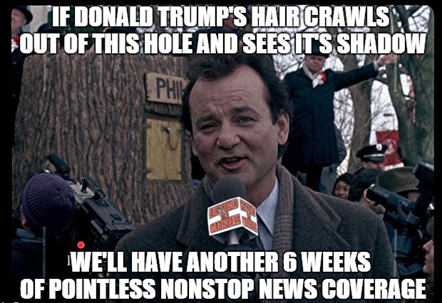 The Donald's Real Hair Makes News Predictions