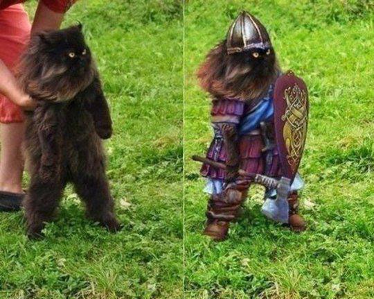 The Wonderful Magic Of Photoshop