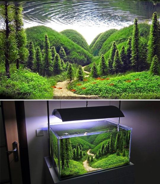 Wow, It's Just An Aquarium