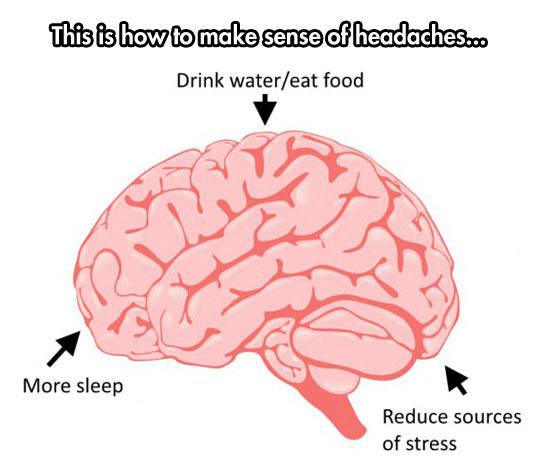 brain-headaches-causes