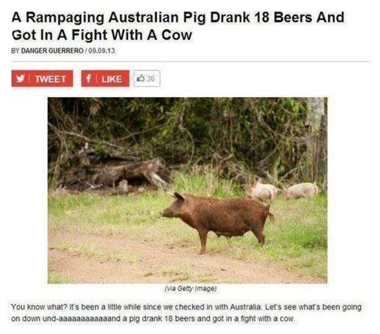 Things That Only Happen In Australia