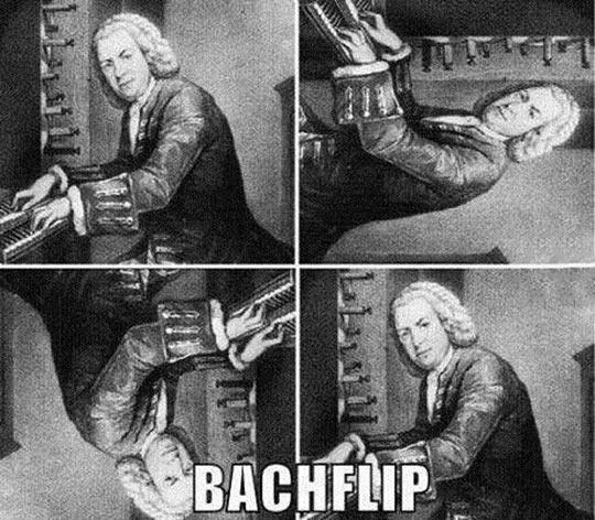 cool-Bach-back-flip-image-rotation