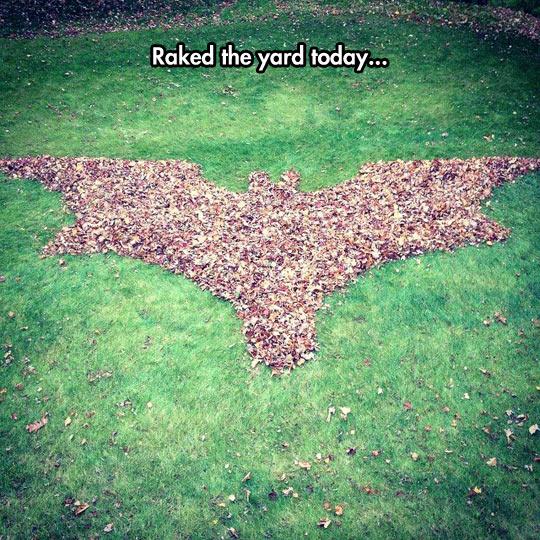 cool-Batman-leaf-field-raked