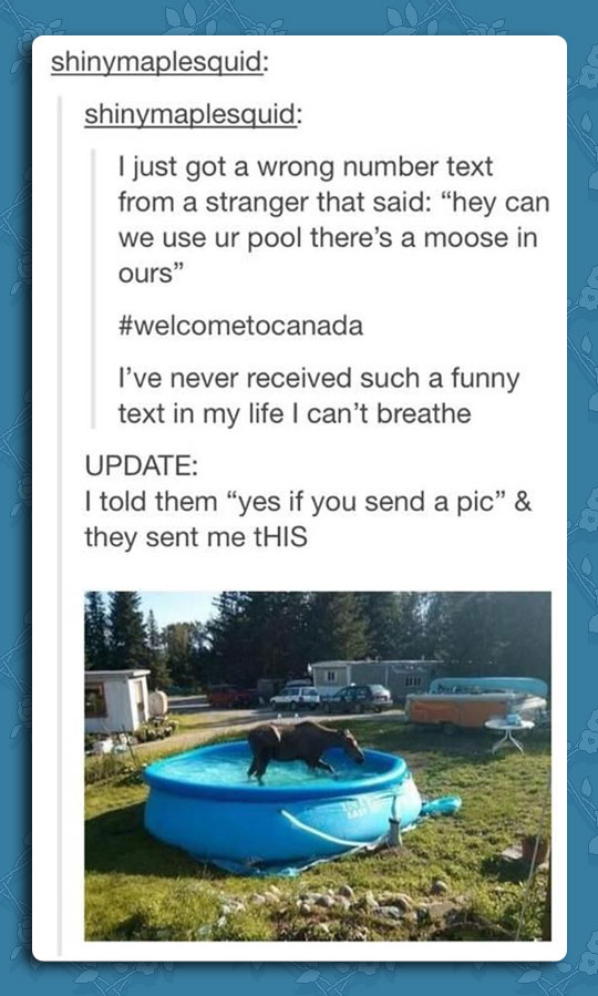 Wrong Number In Canada