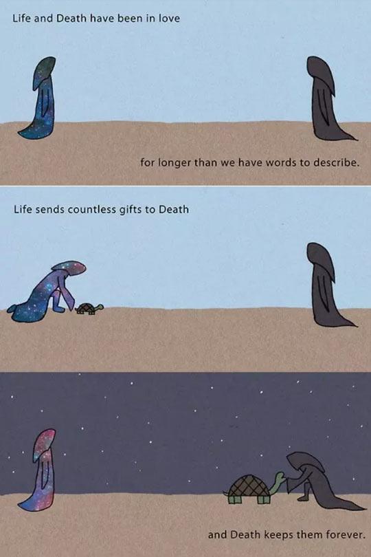cool-Life-Death-love-turtle