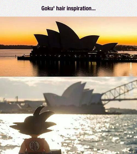 Sidney Opera House Hairstyle