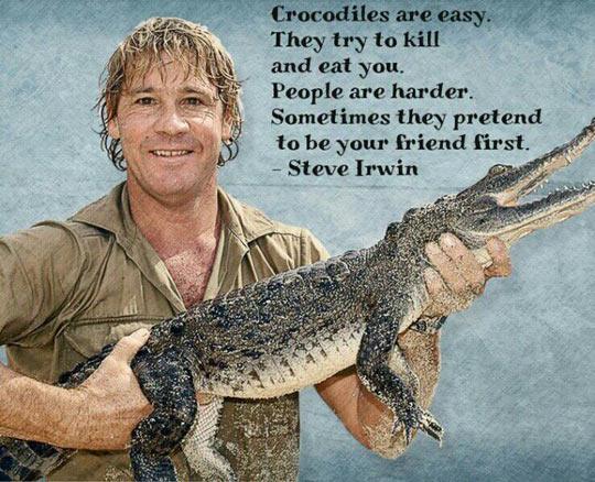 cool-Steve-Irwin-quote-crocodiles