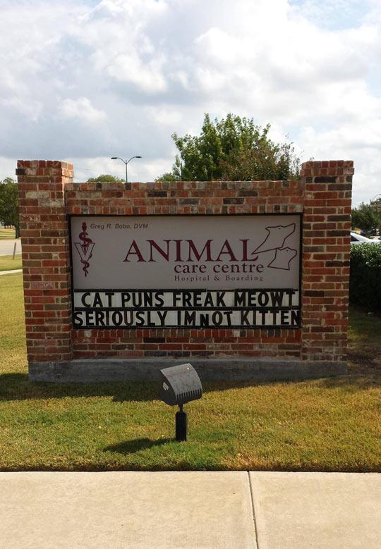 Local Animal Hospital Puns