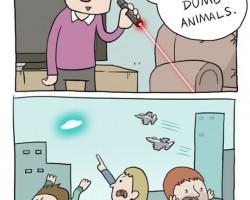 Ha Ha, Dumb Animals
