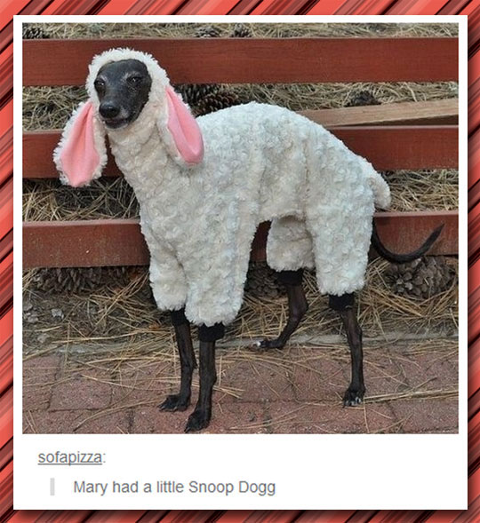Different Kind Of Mary