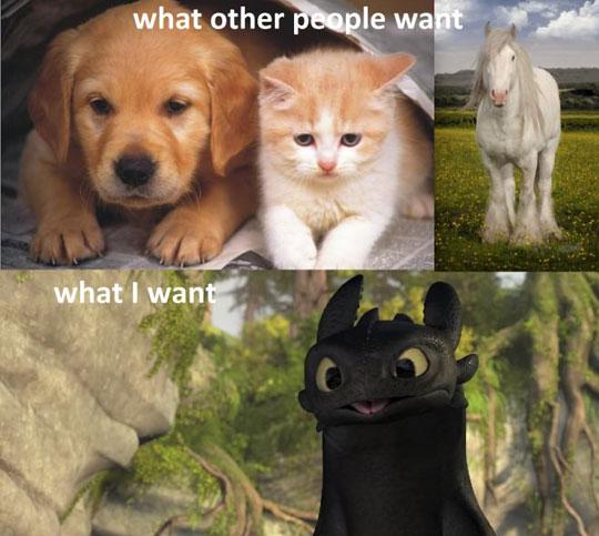 I Want A Special Pet