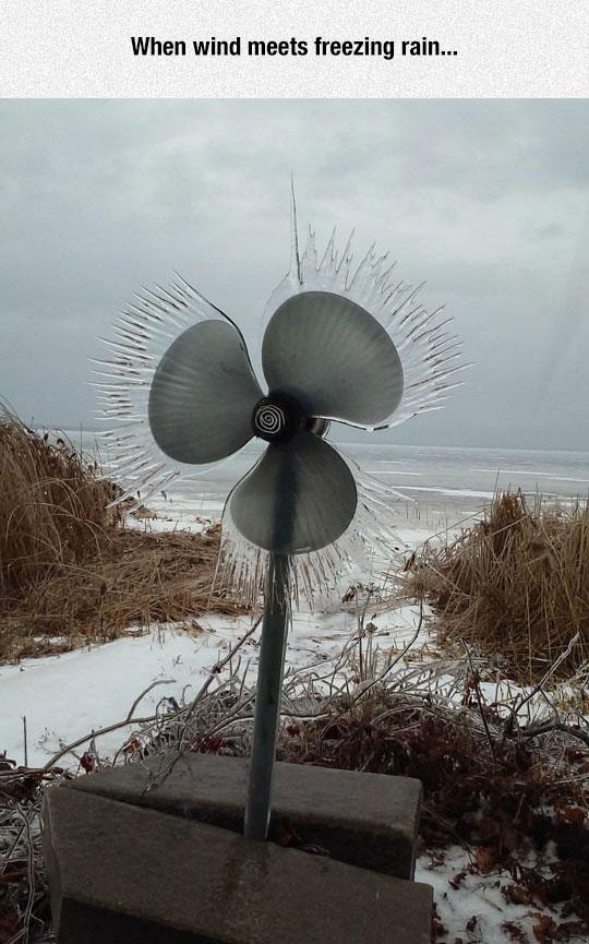 Wind Vs. Freezing Rain