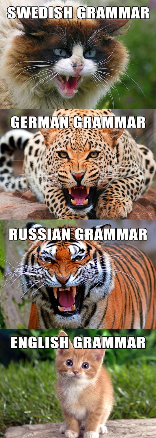 Types Of Grammar