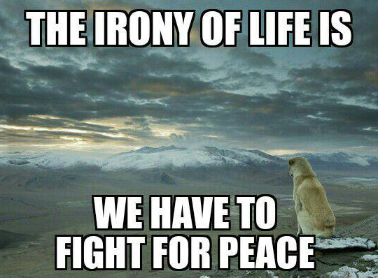 cool-irony-tiger-fight-peace