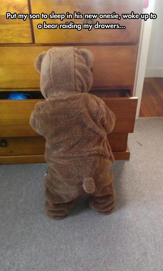 A Bear Broke Into Her Room