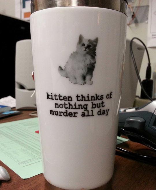 cool-kitten-mug-murder-think