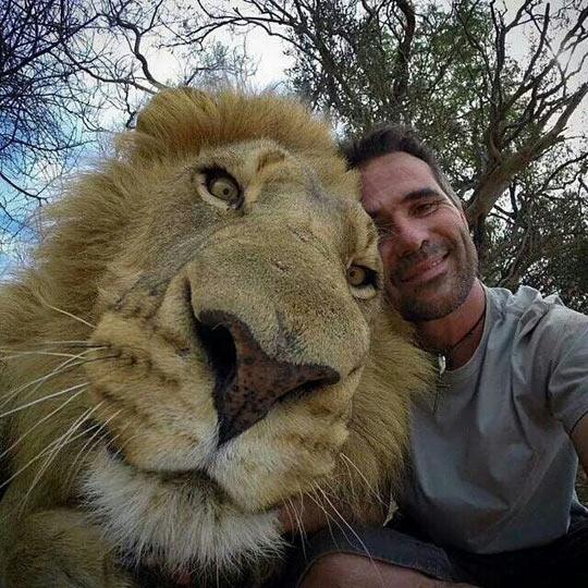cool-lion-face-zoo-keeper-selfie