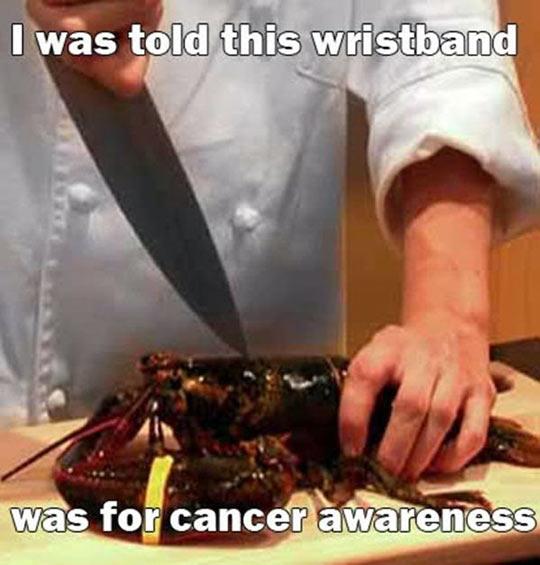 Poor Lobster Was Deceived