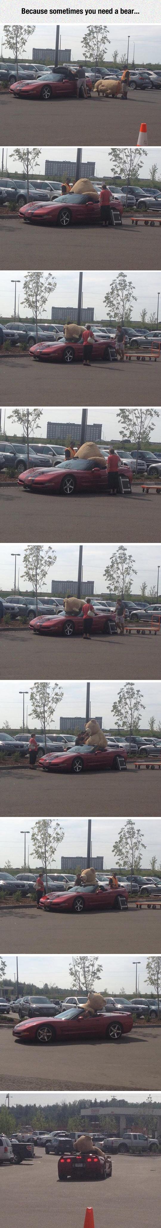 cool-man-teddy-bear-car