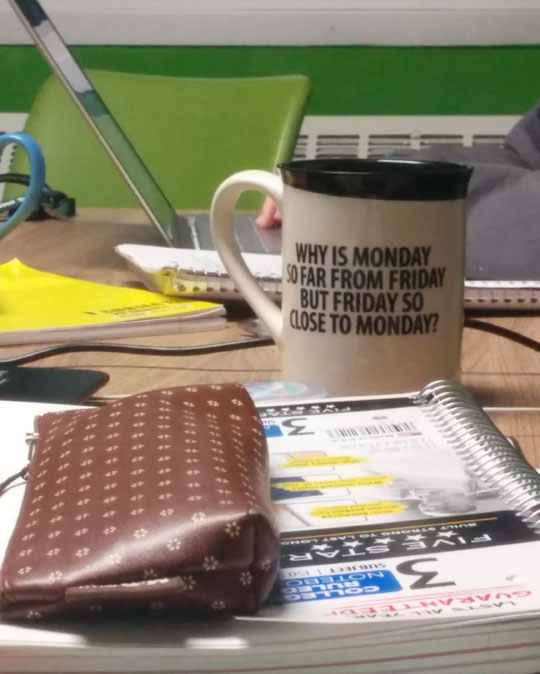 The Mug Is Asking The Important Questions