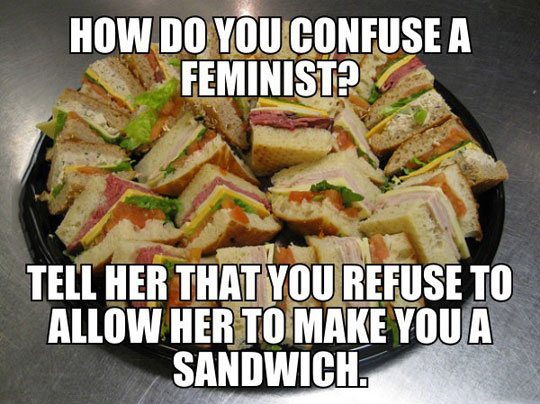 Confuse A Feminist