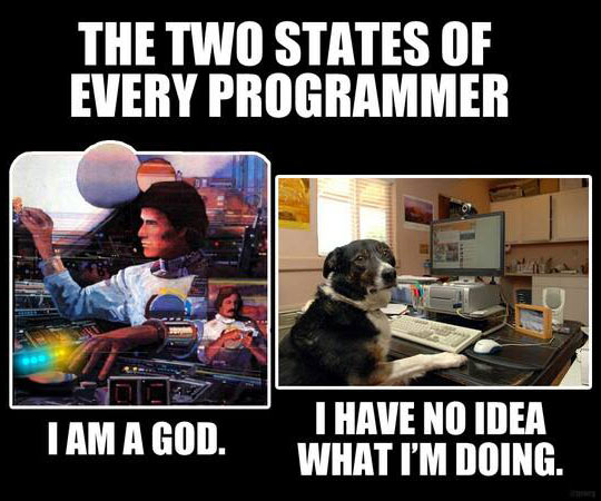 Working As A Programmer