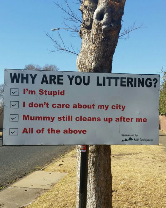 Reasons For Littering