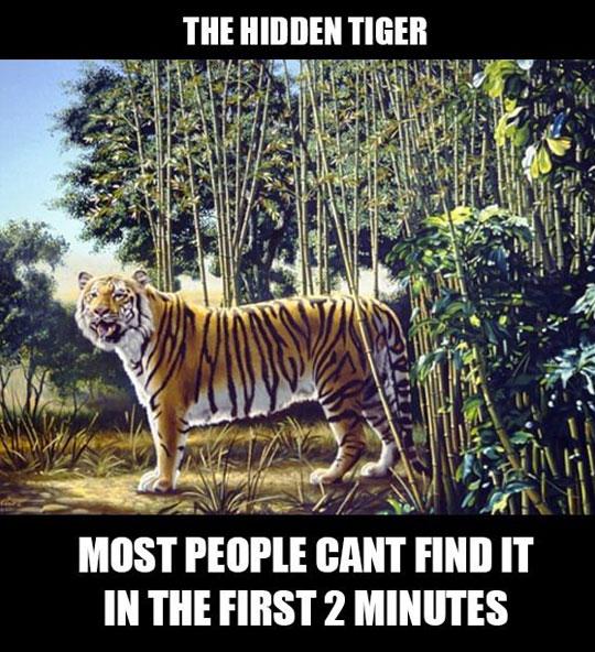 Find The Hidden Tiger