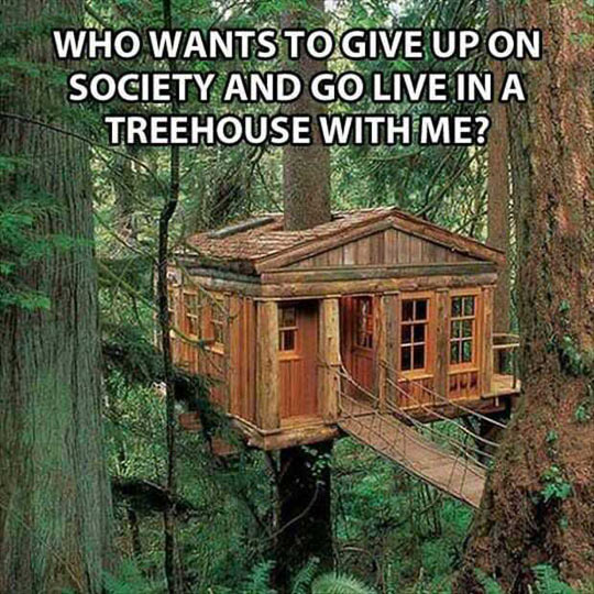 cool-tree-house-escape-society-forest