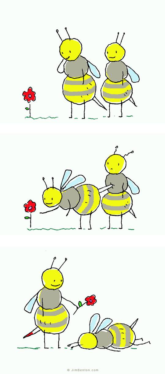 funny-bee-flower-comic