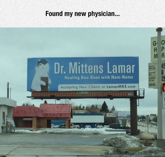 The Doctor I Need