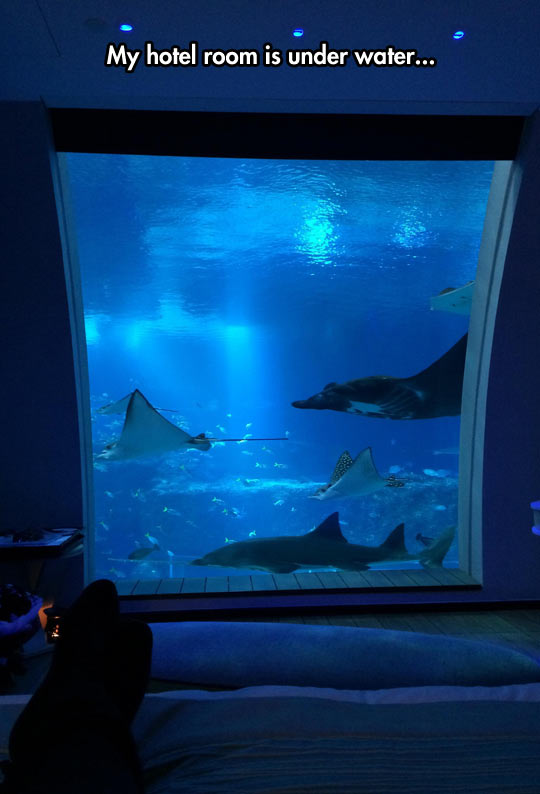 under-water-hotel-room