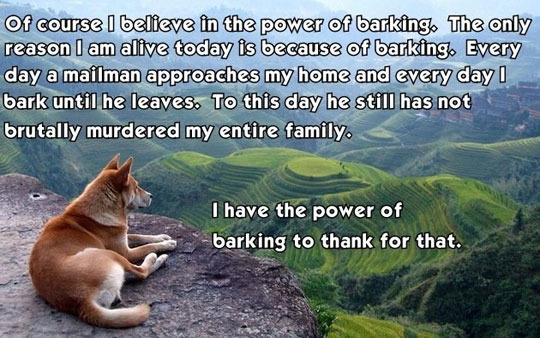 Believe In The Power Of The Bark