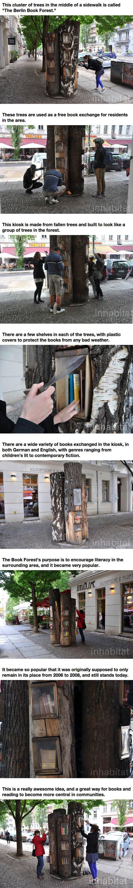 Book Forest In Berlin
