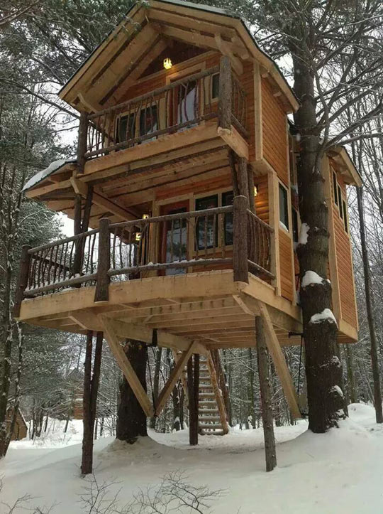 Now That's An Epic Tree House