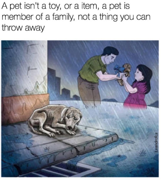 Part Of Your Family