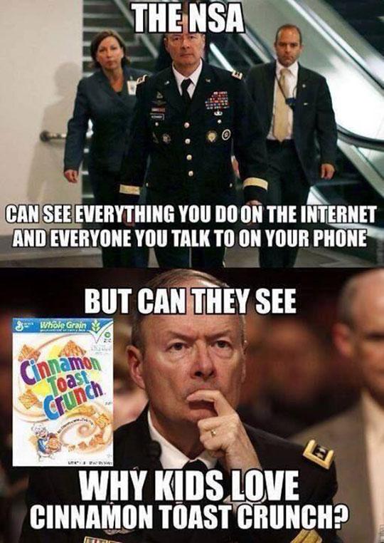 cool-NSA-cereal-cinnamon-toast
