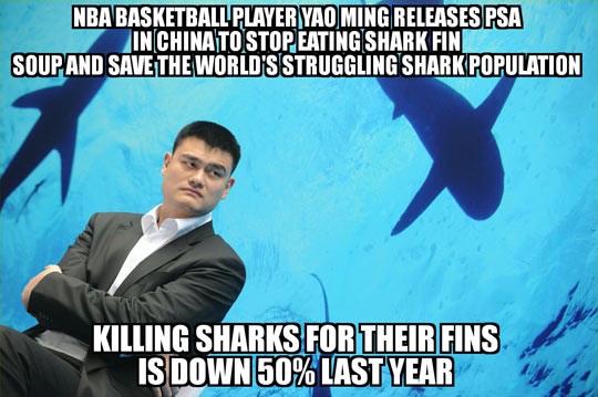 Yao Ming Doing It Right