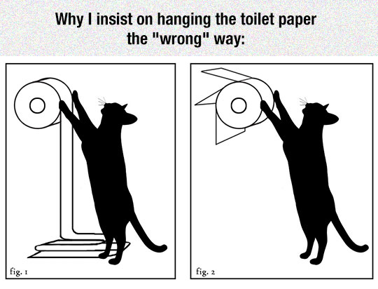 cool-cat-toilet-paper-roll-way