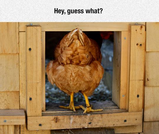 Psst, Hey You