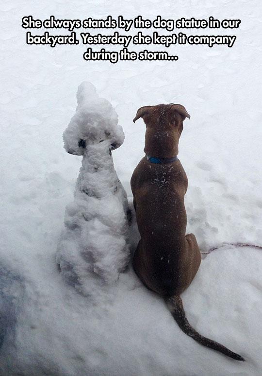 cool-dog-statue-snow-yard